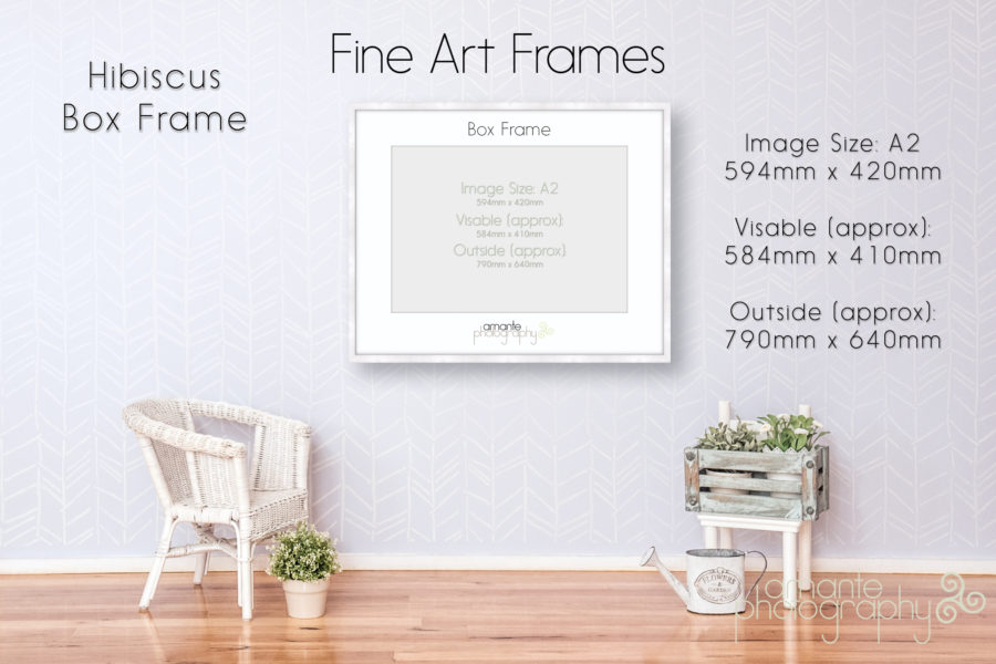 Hibiscus Box Frame